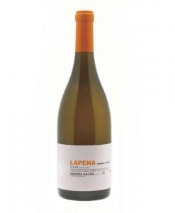 LAPENA2011
