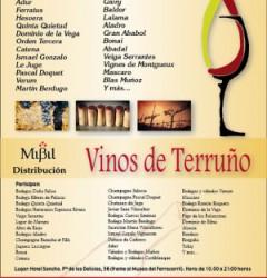Vinos-de-terruno2013_cartel